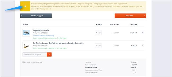 Gutschein auf Kategorie beschränken Plugin Test Bestellung