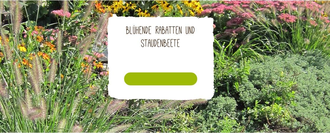 Gartenbedarf  Native Plants - Pflanzen und Gartenbedarf – ShopDNS | Das Shopware ...